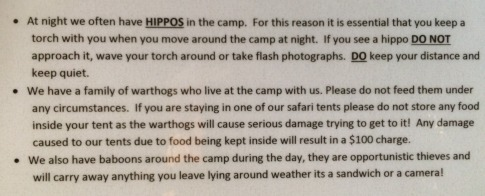 Yes indeed. You know you are alive when a wild hippo is less than 0.5m from where your head is on the pillow!